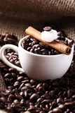 Cup with coffee beans and cinnamon stick Royalty Free Stock Photography