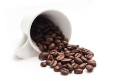 Cup of coffee with beans concept Royalty Free Stock Photos