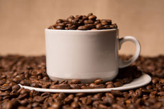 Cup with coffee beans on a dark background Royalty Free Stock Photography