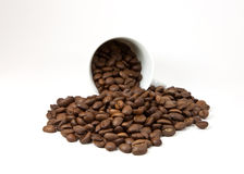 Cup with coffee beans Royalty Free Stock Image