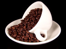 Cup of coffee beans on saucer. Color photo of a tilted white coffee cup with a lot of dark brown coffee beans on a matching white saucer.  Black background Royalty Free Stock Photo