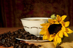 Cup with coffee beans and sunflowers Royalty Free Stock Image