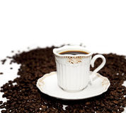 Cup of coffee on beans. Cup of coffee on coffee beans  on white Royalty Free Stock Photography