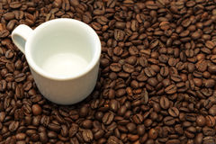 Cup on the coffee beans. White cup on the coffee beans background. Health Stock Image