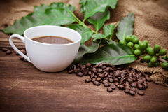 Cup coffee and beans on wood background Stock Photo