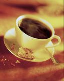 Cup of Coffee with Biscotti. Selective focus of coffee cup with biscotti Stock Photos