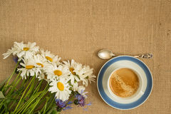 Cup of coffee and bouquet of chamomile Royalty Free Stock Image