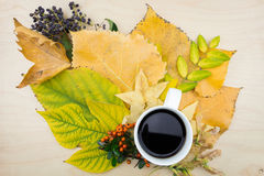 A cup of coffee with bouquet of yellow, green autumn leaves,berries Stock Photography