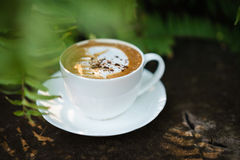 Cup of coffee cappuccino art on wood floor with green leave fram Royalty Free Stock Images
