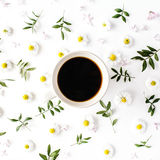 Cup of coffee with chamomile flower and green branches Stock Image