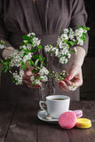 Cup of coffee and cherry blossom branch on a dark background Stock Photo