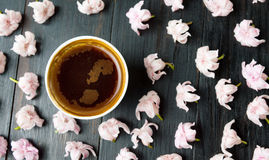 Cup of coffee and cherry blossom flowers Royalty Free Stock Images