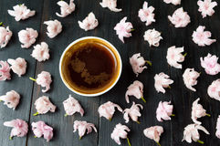 Cup of coffee and cherry blossom flowers Royalty Free Stock Photography