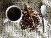 Cup of coffee with cinammon. Cup of coffee and coffee beans on canvas Stock Image