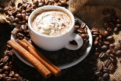 Cup of coffee with cinnamon. Cup of coffee with cream and cinnamon on the textural fabrics Stock Images