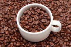 Cup of coffee with coffee bean inside Stock Photos