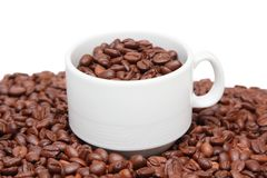 Cup of coffee with coffee bean inside Stock Image