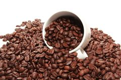 Cup of coffee with coffee bean inside Stock Images
