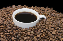 Cup from coffee on coffee grains royalty free stock images