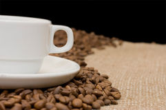 Cup from coffee on coffee grains Royalty Free Stock Photo