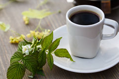 Cup of coffee, coffee pot and linden flower on the table.  royalty free stock image