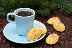Cup of coffee and cookies madeleines, fir branches Stock Photo