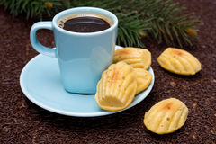Cup of coffee and cookies madeleines, selective focus Stock Photos
