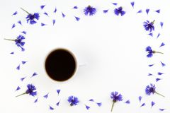 Cup of coffee with cornflowers frame. Top view Royalty Free Stock Photos