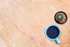 Cup of coffee and cuctus on the marble table background. Stock Photography