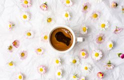 Cup of coffee and daisy flowers. On white fabric royalty free stock image