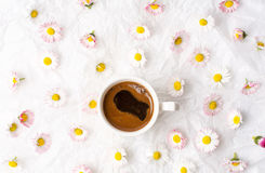 Cup of coffee and daisy flowers Stock Photos