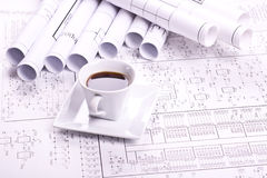 Cup of coffee and detail drawing Royalty Free Stock Image