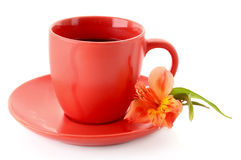 Cup of coffee and flower Royalty Free Stock Photography