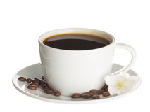 Cup of coffee and flower bell Stock Images