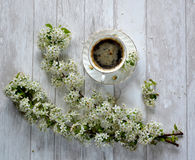A cup of coffee and flowers. Royalty Free Stock Image