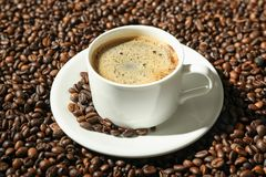 Cup of coffee with frothy foam on beans background, space for text stock photo
