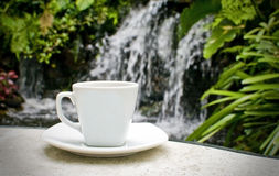 A cup of coffee in the garden and waterfall Royalty Free Stock Photo