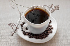 A Cup of coffee. Grain the morning cheerfulness Breakfast lunch white background saucer drink break vacation herbarium Royalty Free Stock Photos