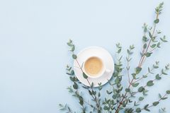 Cup of coffee and green eucalyptus leaf on blue table top view. Minimalistic breakfast in flat lay style. Cup of coffee and green eucalyptus leaf on table top royalty free stock photography