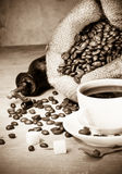 Cup of coffee and grinder Royalty Free Stock Image