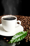 Cup of coffee,haze,green leaf and coffee beans on black Stock Photography