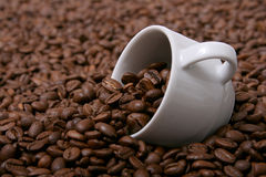 Cup Of Coffee IV. Picture of coffee beans ans a cup Royalty Free Stock Images
