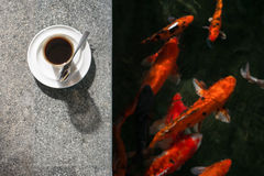 Cup of coffee beside Koi pond Royalty Free Stock Image