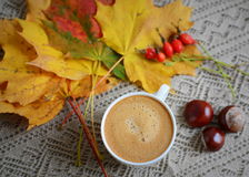 Cup of coffee with leaves and chestnuts Royalty Free Stock Photo