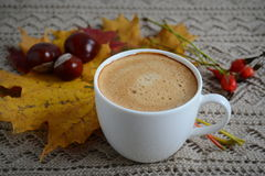 Cup of coffee with leaves and chestnuts Stock Photos