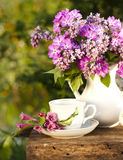 cup with coffee and lilac royalty free stock photography