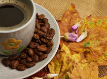 The cup of coffee lying on the books with maple leaves Royalty Free Stock Image