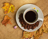 The cup of coffee with maple leaves and everlasting flowers Royalty Free Stock Photo