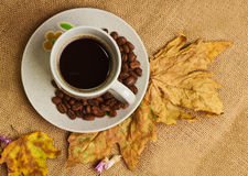 The cup of coffee with maple leaves and everlasting flowers Royalty Free Stock Images