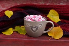 Cup with a coffee with marshmallow. A beautiful cup with a coffee cocoa and marshmallow in the autumn season Royalty Free Stock Photo